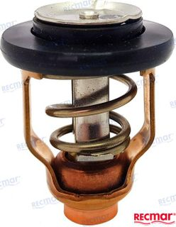 Suzuki Thermostat DF90-300 71 Deg