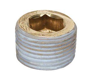 BSP Plug