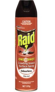 RAID ONE SHOT INSECT SURFACE SPRAY ODOURLESS 450G