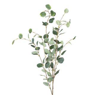 Eucalyptus Spray Extra Long 1.21m