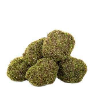 Moss Balls in Bag x6 35cm