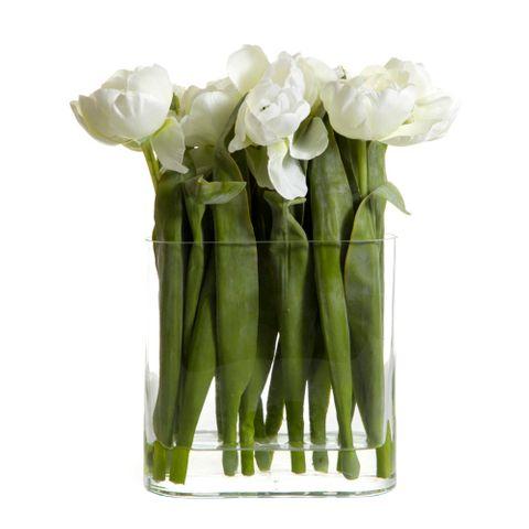Tulip in Water in Vase White