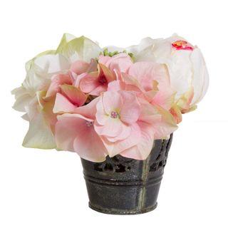 Rose/Hyd in Tin Pot 15cm Pink/Green