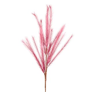 Wheat Rabbit Tail 1.2m Light Pink