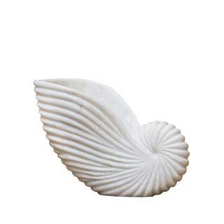 Marble Conch Shell Medium White