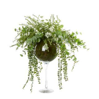 Wax Flower & Eucalyptus in Champagne Glass Vase