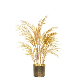 Areca Palm Potted Small Gold