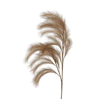 Wheat Rabbit Tail 1.2m Dark Natural