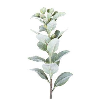 Eucalyptus Berry Spray 70cm