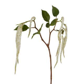 Amaranthus Hanging Plant 90cm White