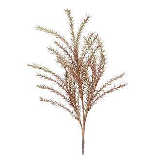 Wild Twig Grass 90cm Light Brown