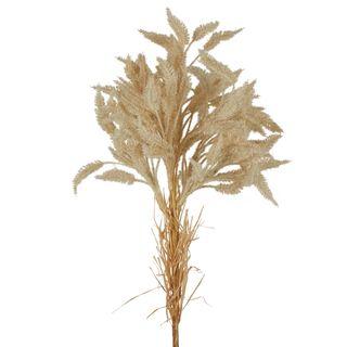 Dried Look Wheat Grass Stem 80cm Cream