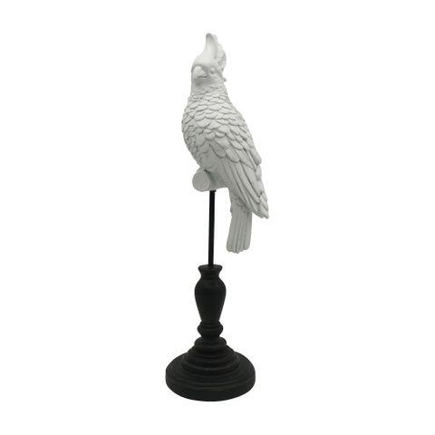 Island Parrot White