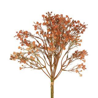 Gypsophila Bundle Apricot