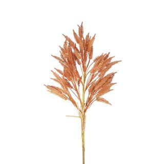Wheat Stem 66cm Apricot