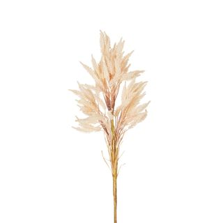 Wheat Stem 66cm Blush Pink