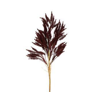 Wheat Stem 66cm Deep Plum