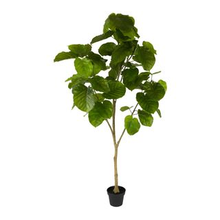 Real Touch Ficus Umbellata 2M