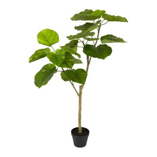 Real Touch Ficus Umbellata 1.2M