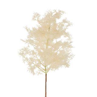 Smoke Tree Stem Natural Small