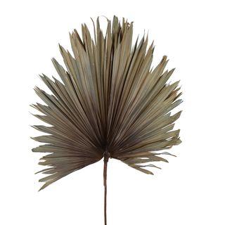 Preserved Palm Leaf Grey Blue Large