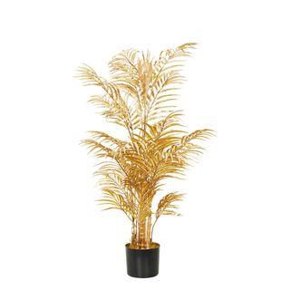 Areca Palm Potted Medium Gold