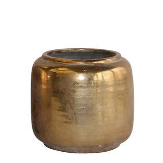 Whitney Pot Gold