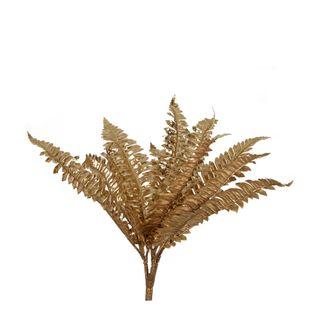 Boston Fern Metallic Gold