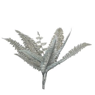 Boston Fern Metallic Silver