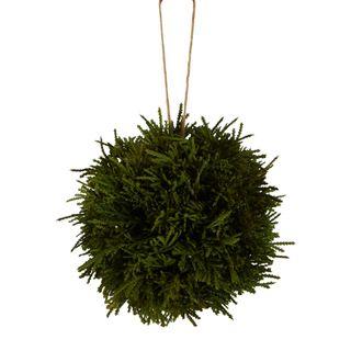 PRE-ORDER Cypress Hanging Ball Green 15cm