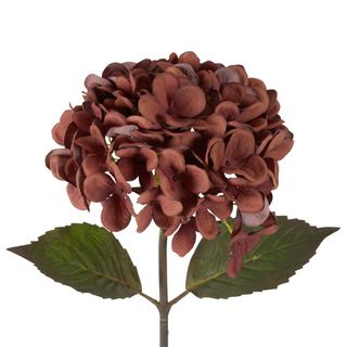 Dried Look Hydrangea Stem 48cm Brown