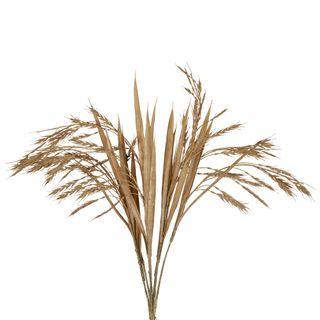 Wheat Bush Stem Brown