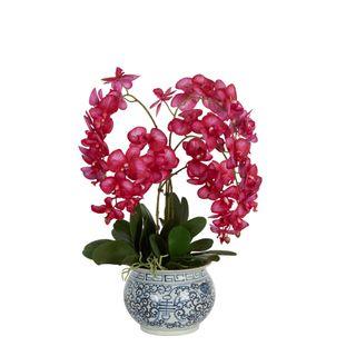 Mahiya Orchid Arrangement Hot Pink