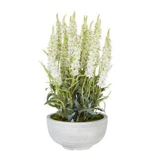 Veronica Arrangement in Cement Pot White