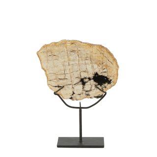 Nusa Petrified Wood Sculpture