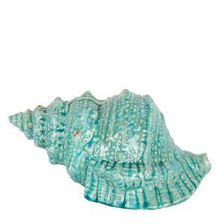 Seashell Décor Green
