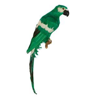 Erko Hanging Parrot Green