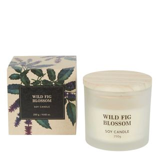 Wild Fig Blossom Soy Candle 250g