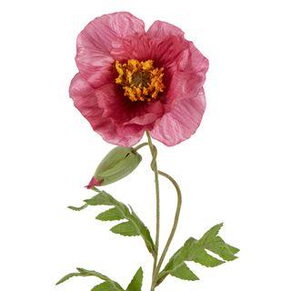 Poppy Stem 68cm Mauve
