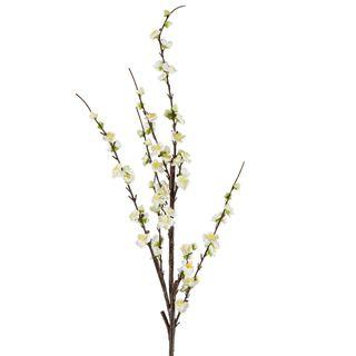 Japonica Blossom Stem White