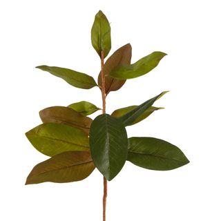 Autumn Magnolia Leaf Spray Stem