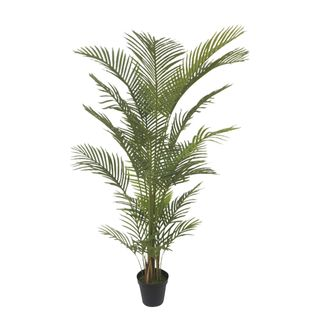 Real Touch Palm Tree In Black Pot 180cm
