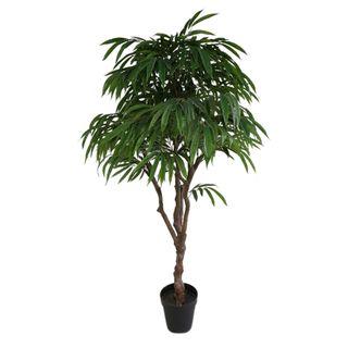 Eucalyptus Tree In Black Pot 170cm