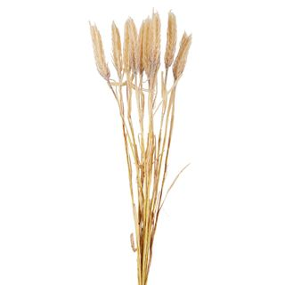 Dried Look Wheat Bunch Natural