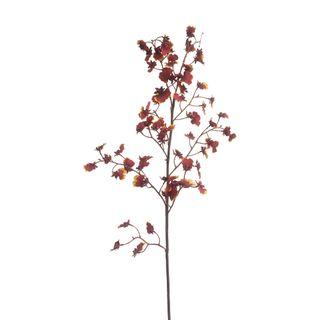 Dancing Orchid 93cm Burgundy