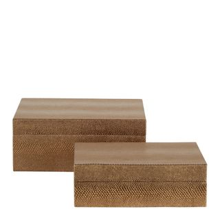 Stevie Rectangle Box Set of 2 Bronze