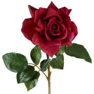 Rose True Touch  Stem 50cm Plum