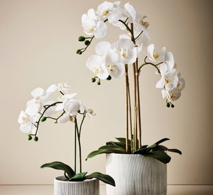 Floral Interiors Products Artificial Arrangements