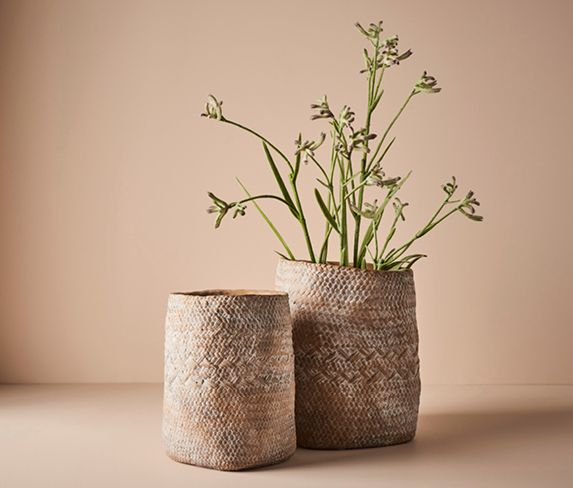 Floral Interiors Artificial Plants Kangaroo Paw Creative Living