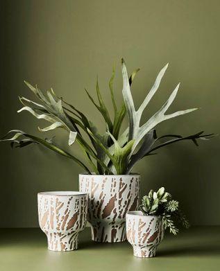 Floral Interiors Artificial Ferns